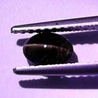Kornerupin Kattöga 0,58 Ct Oval Cab 5,6x4x3 mm